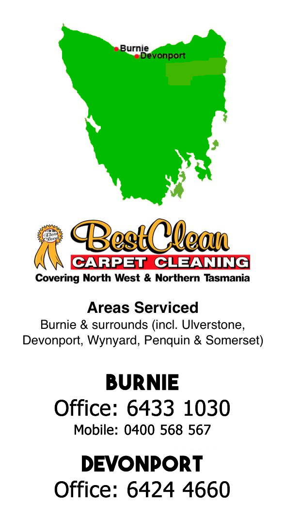 best local carpet cleaner